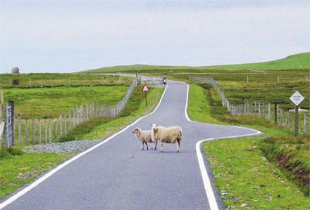 Innovativa vägar för alla trafikslag. Foto: G. Franzén