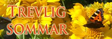 trevlig_sommar