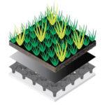 Därför är gröna tak en hållbar lösning