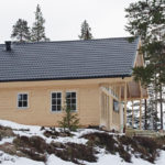 Skillnader i underhåll för sedumtak jämfört med övriga tak