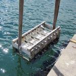 Självläkning av betongsprickor i havsmiljö – inverkan av cementtypen