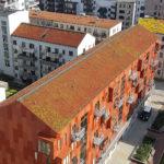 En introduktion till dagvattenflödesmodellering i gröna tak