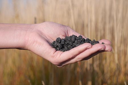 Biokol – det nya svarta i gröna klimatskal