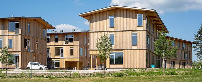 Trä är framtidens bärande byggmaterial