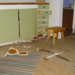 Åldersbestämning av äkta hussvamp – en osäker metod