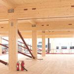 Skador i hus byggda av massivt trä